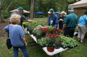 President Elect James Wade, a master gardener, points out the studiness of one of the native plants.