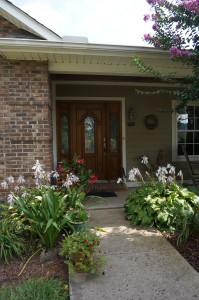 Ken Roth's entrance plantings to his home in Leicester, NC.